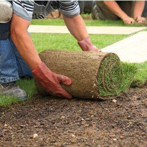 Landscaping Risk assessment & method statement