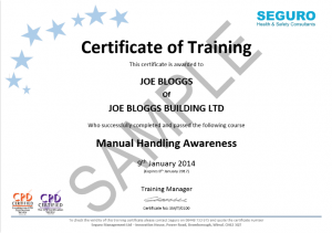 Training Certificate Seguro