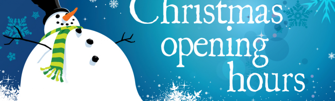 Seguro Christmas Operating Hours